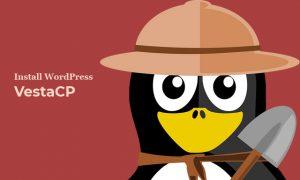Cara install WordPress di VestaCP