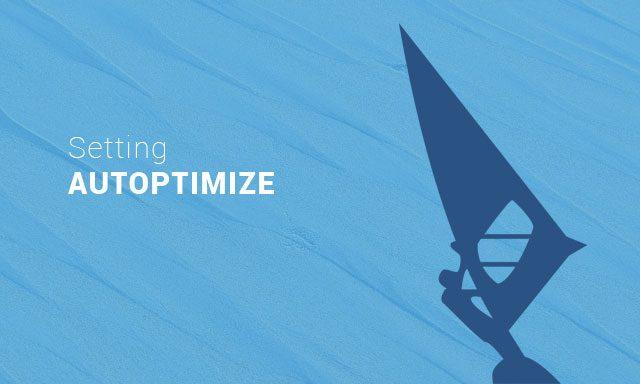 cara setting autoptimize